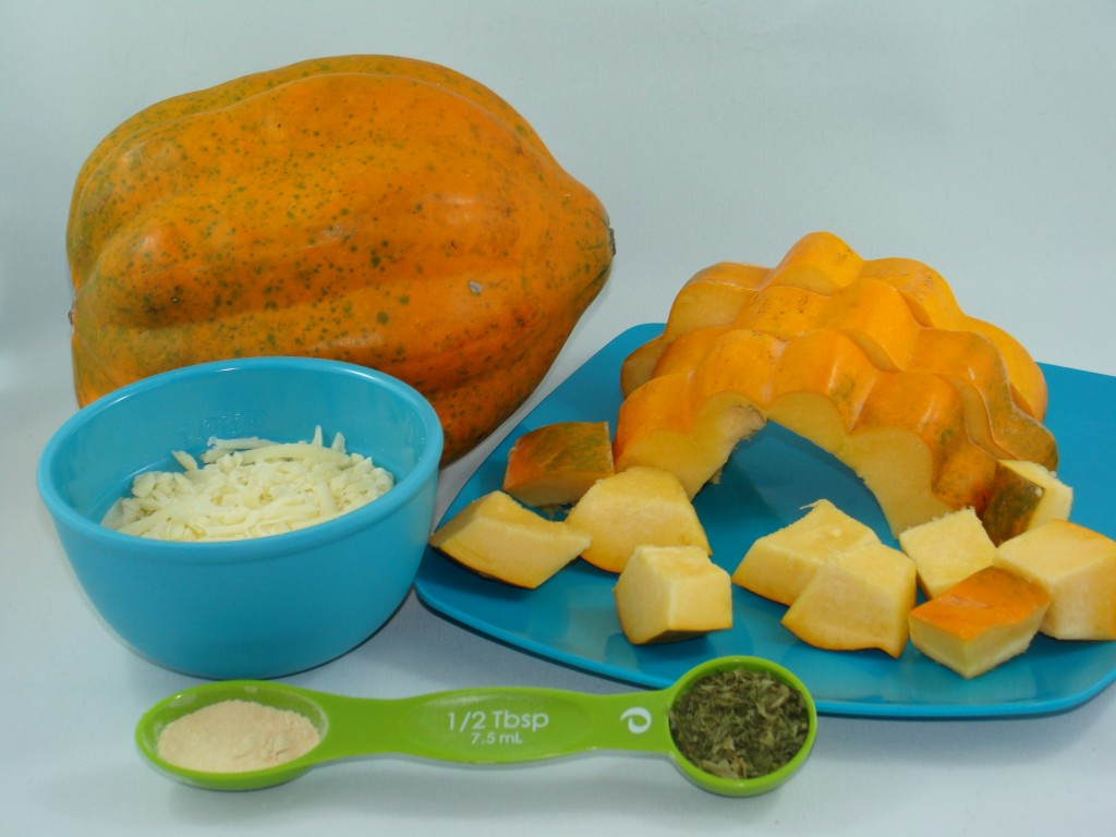Ingredients for Squash Parmesan Bites