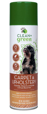 Dog carpet and Upholstery