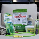 Doggy Day Spa Gift Pack