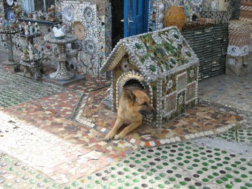 Unusual-dogs-house