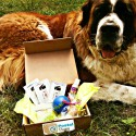 Postal Puppy Monthly Box