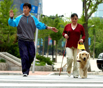 Guide Dog Trainer with dog and blind woman