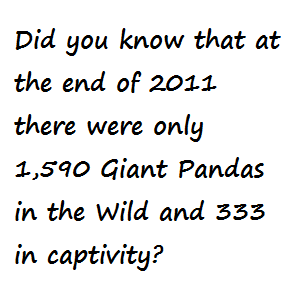 Panda Fact