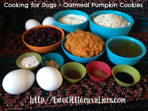 Cooking for Dogs Oatmeal Pumpkin Cookies