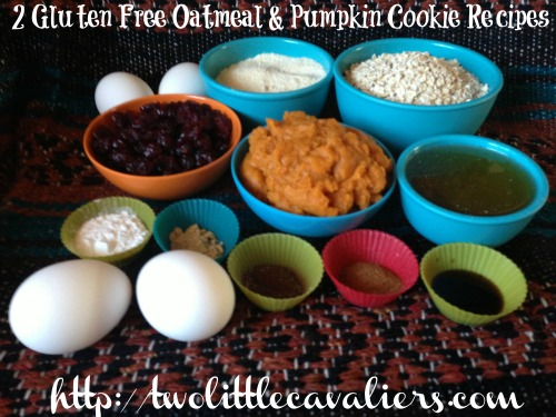 Gluten Free Oatmeal Pumpkin Cookies