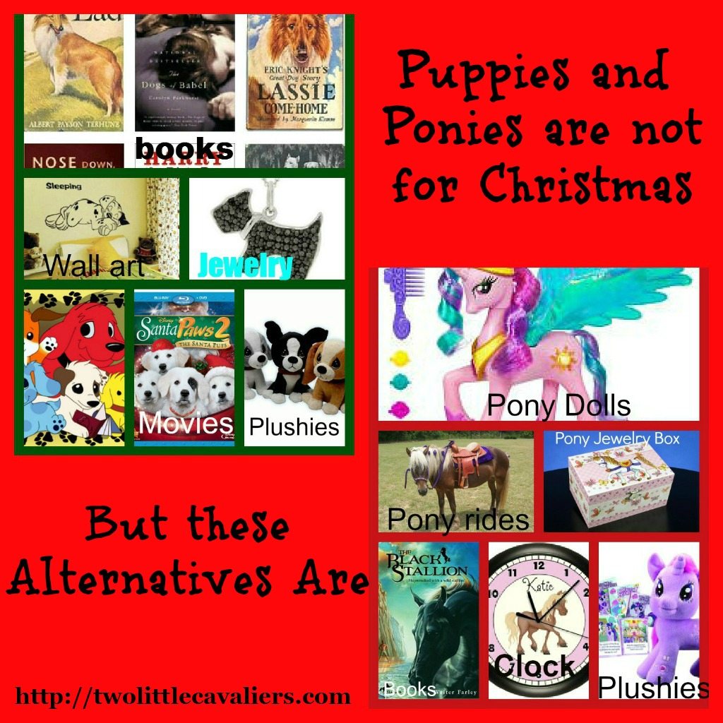 puppies and ponies are not for Christmas but these alternatives are
