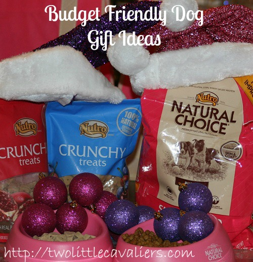 Budget Friendly Dog Gift Ideas