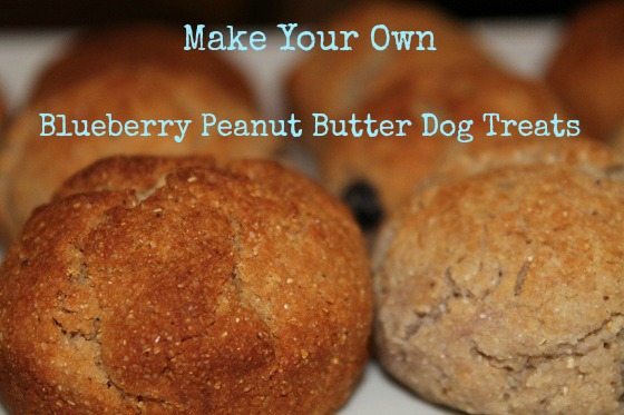 Blueberry Peanut Butter Dog Treats