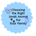 Choosing the right small animal for your family
