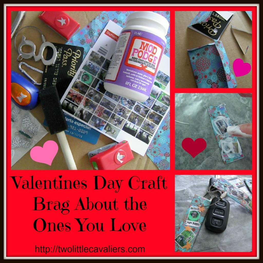 Valentine's Day Craft Brag About the Ones You Love - twolittlecavaliers.com