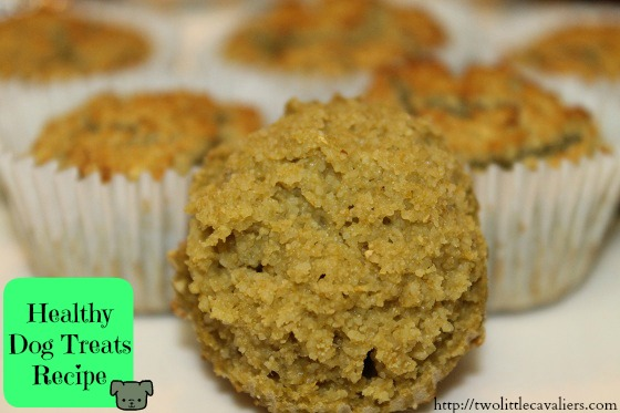 Recipes for diabetic dog treats besto blog diy healthy dog treats do it your self forumfinder Images