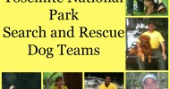 Yosemite National Park Search and Rescue Dog Teams