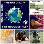 Pet Bloggers Blog Hop