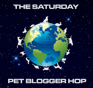 Come Blog Hop with Pets