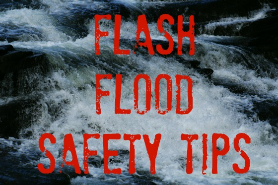 Pet Safety - Flash Flood Safety