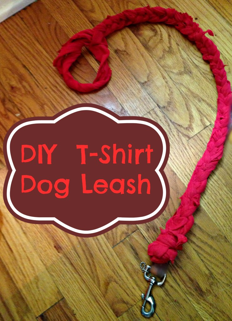 DIY Upcycled Dog Leash