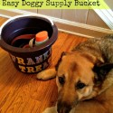 Organization Tips and DIY Dog Stuff Storage Bucket
