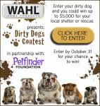 Dirty Dog Contest