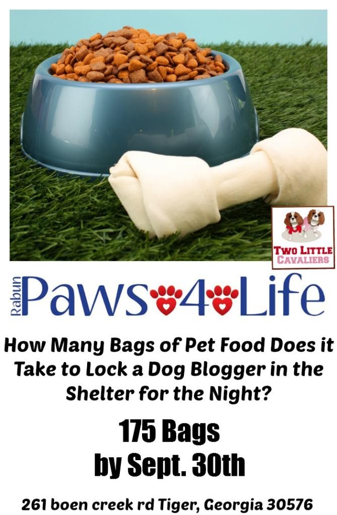 Rabun Paws 4 Life Food Drive - Animal Shelter