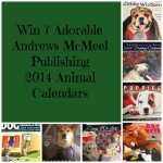 Fan Appreciation Calendar Giveaway / Pet Bloggers Blog Hop #lovefurbabies