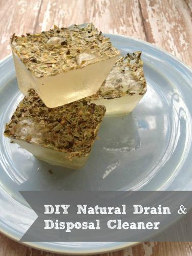 DIY Natural Disposal and Drain Cleaner