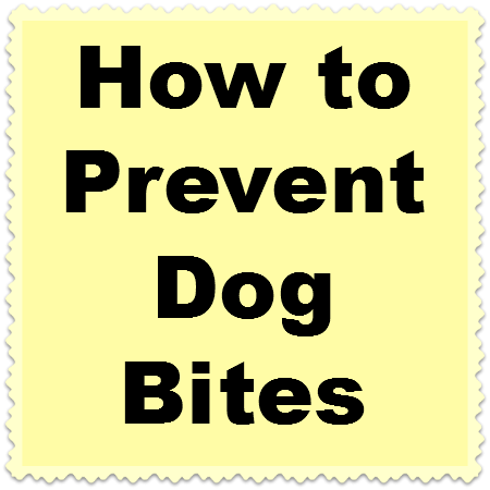 How To Get Dogs To Poop In A Certain Area How To Prevent A Dog From Biting You Staffordshire