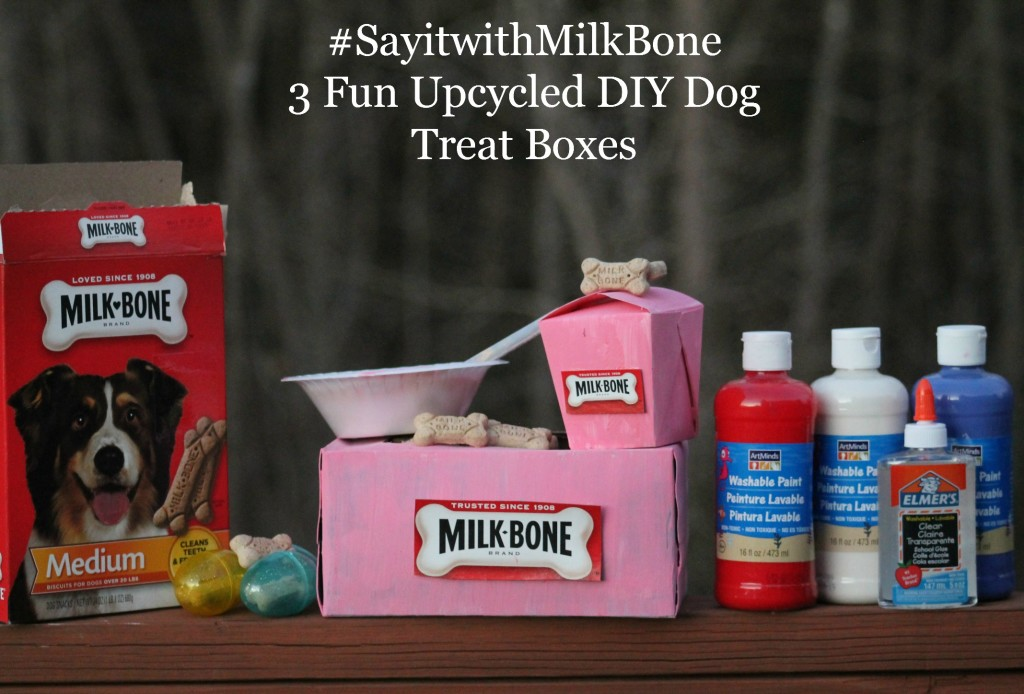 #SayitwithMilkBone 3 Fun Upcycled DIY Dog Treat Boxes