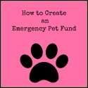 How to Create an Emergency Pet Fund
