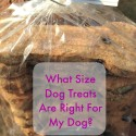 What Size Dog Treats Are Right For My Dog?