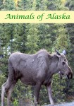 Animals of Alaska