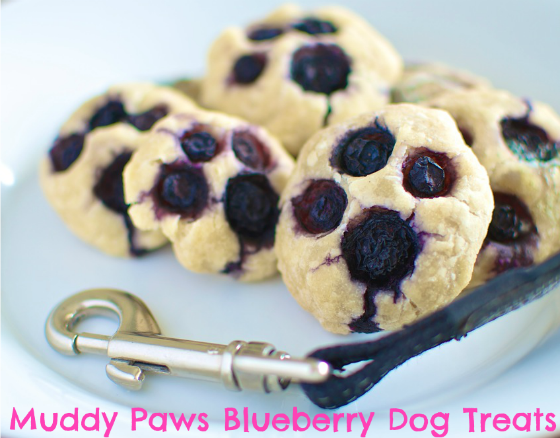 Muddy Paws Blueberry Dog Treats