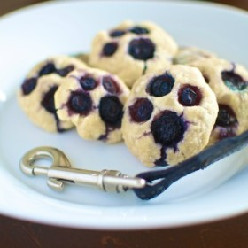 Muddy Paws Homemade Blueberry Dog Treats