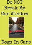 Don't Break My Car Window - Dogs In Cars