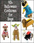 40 Halloween Costumes for Dogs with Sizing Information and Tips for Measuring your dog