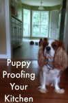 Puppy Proofing Your Kitchen