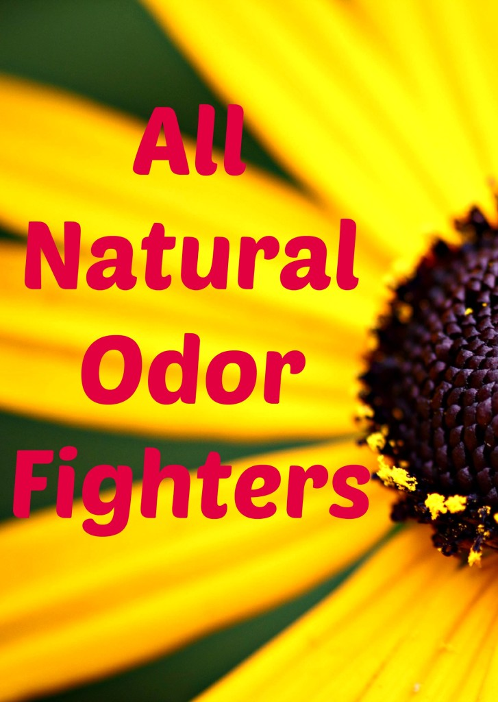 All Natural Odor Fighters