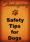 6 Thanksgiving Safety Tips for Dog http://twolittlecavaliers.com