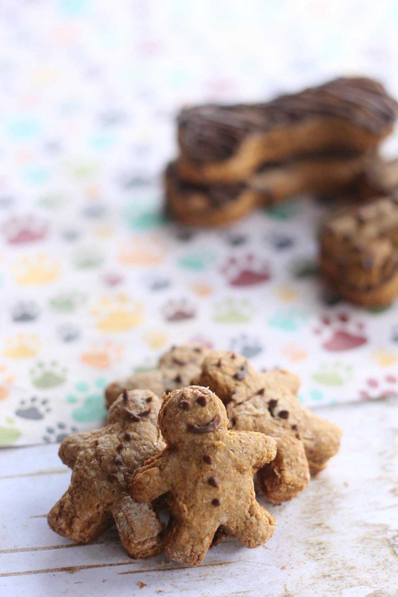 Homemade Gingerbread Dog Treats with Carob Icing