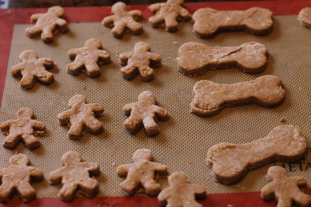 Homemade Gingerbread Dog Treats