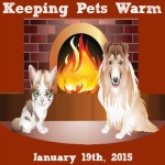 Keeping Pets Warm 350350