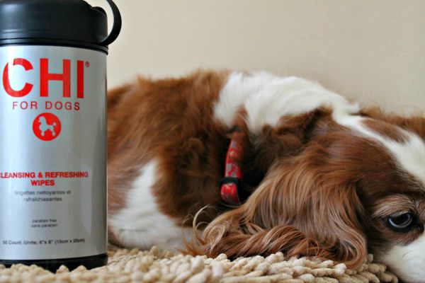 CHI for Dogs Cleansing and Refreshing wipes