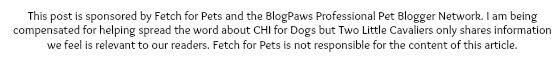 CHI for Dogs Disclosure