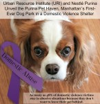 Domestic Abuse Awareness Purina Pet Haven