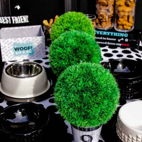 Dog Black & White Party Tablescape #party