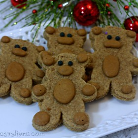 Teddy Bear Dog Treats